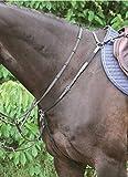 Hans Melzer Horse Equipment Vorderzeug Bad Harzburg, schwarz/Silber, Pony