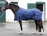 PFIFF 101672 Pferde Stall Decke Orlando, Winterdecke Pferdedecke Stalldecke, Blau 165 cm
