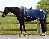 QHP Nierendecke Fleece-Ausreitdecke Ornament Fleecedecke Sattelausschnitt hinten mit Ornament in Silber (blau, S)