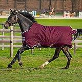 Horseware Amigo Hero Ripstop 50g Weichen Teppich 145cm Fig/Silver