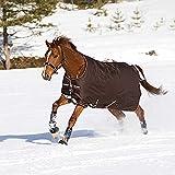Horseware Amigo Bravo 12 - Winterdecke oder Regendecke 140cm 250g Füllung Chocolate/Cream