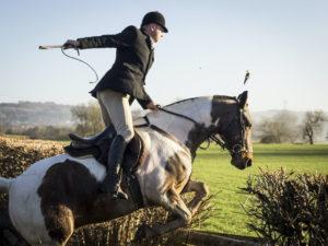 Pferd mit Bogenpeitsche