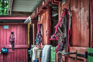 Pferdedeckenhalter und anderes Pferdezubehör