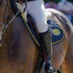 Reitsocken Reiter und Pferd