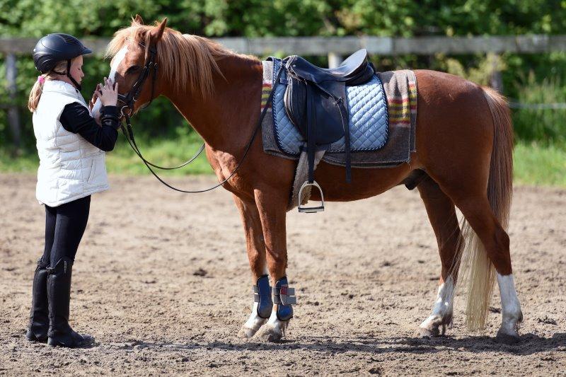 Kind trägt Reitweste vor Pferd