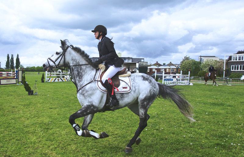 eine Reiterin im Turnierjacket auf dem Pferd