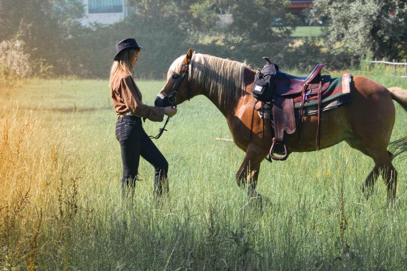Pferd mit Wanderreitsattel und Reiterin