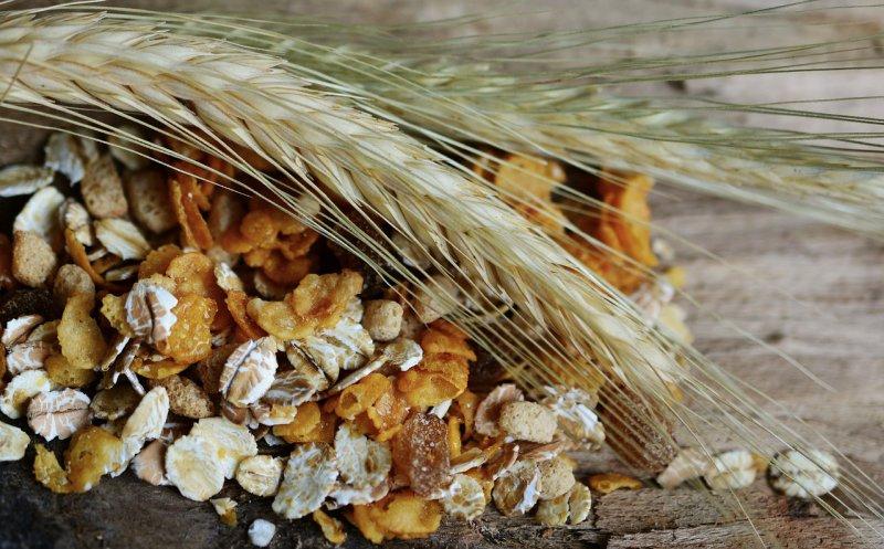 Zutaten wie Getreideflocken die Pferdemüsli